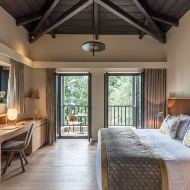 Euphoria Junior Suite with Forest View